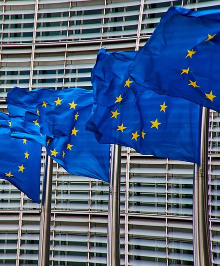 LA COMMISSIONE EU PER LA SANITÀ PUBBLICA E LA SICUREZZA ALIMENTARE: UNA ROUTE MAP EUROPEA DEL COVID-19
