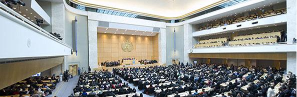 Si è conclusa la 74ª Assemblea Mondiale della Sanità